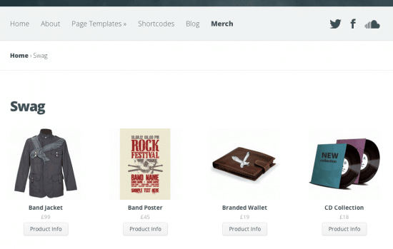 Best WP ecommerce themes swag