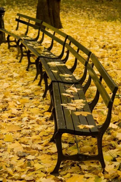 why november is a key month for affiliate marketers