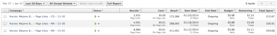 Facebook Ads niche site duplicate campaigns