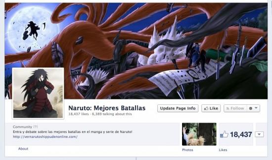 Facebook Ads niche site fanpage