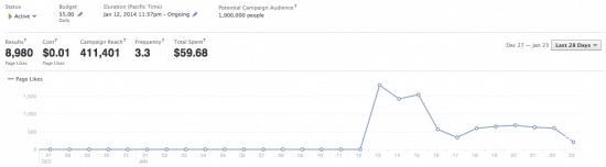 Facebook Ads niche site first campaign