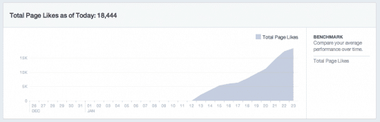 Facebook Ads niche site likes growth