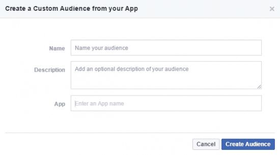 App Activity Custom Audience Facebook