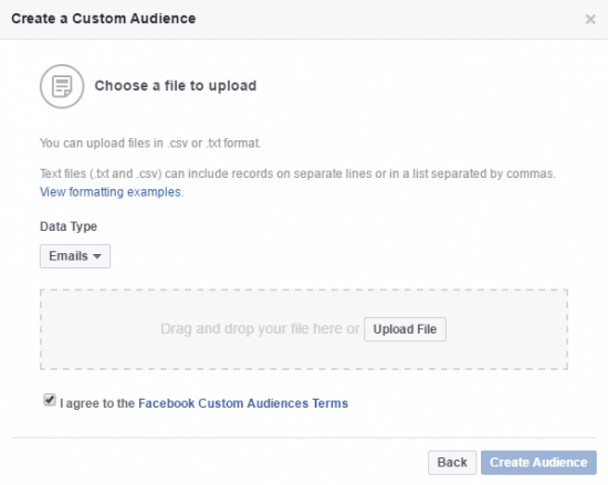Customer File Facebook Custom Audience