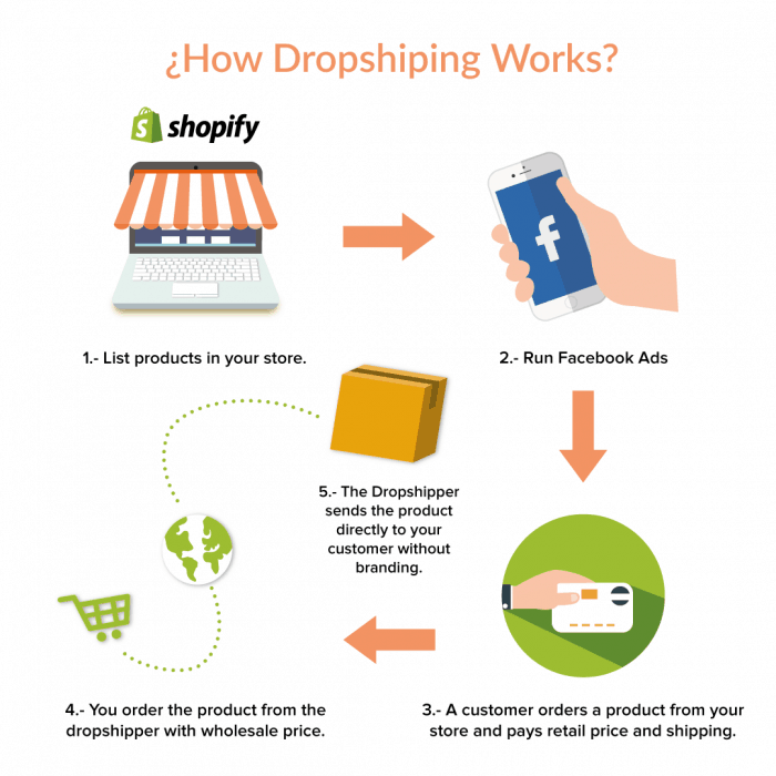 shopify empires the process behind 100000 per month ecommerce stores dropshipping model