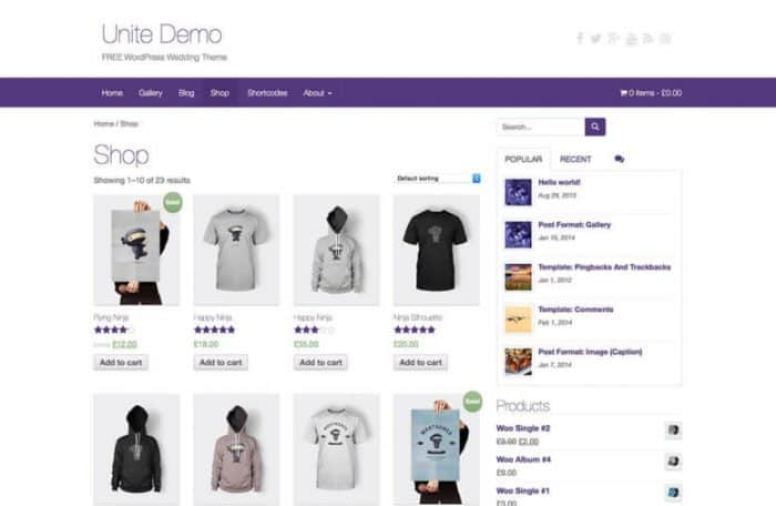 how to monetize a website - ecommerce store