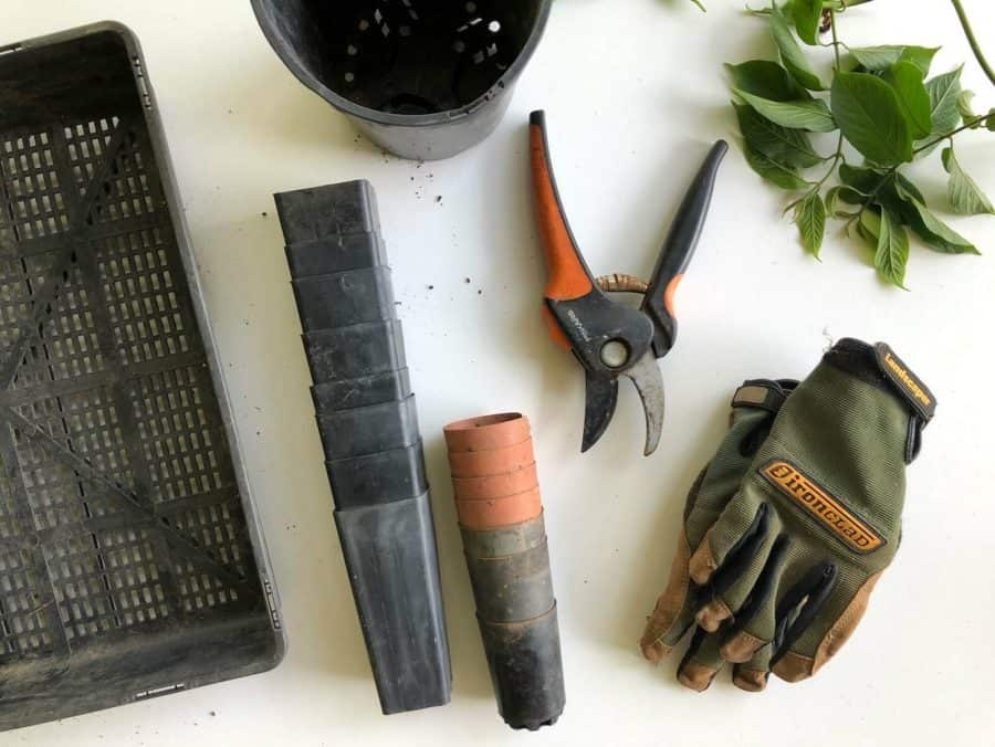 how to make 1000 dollars fast - gardening