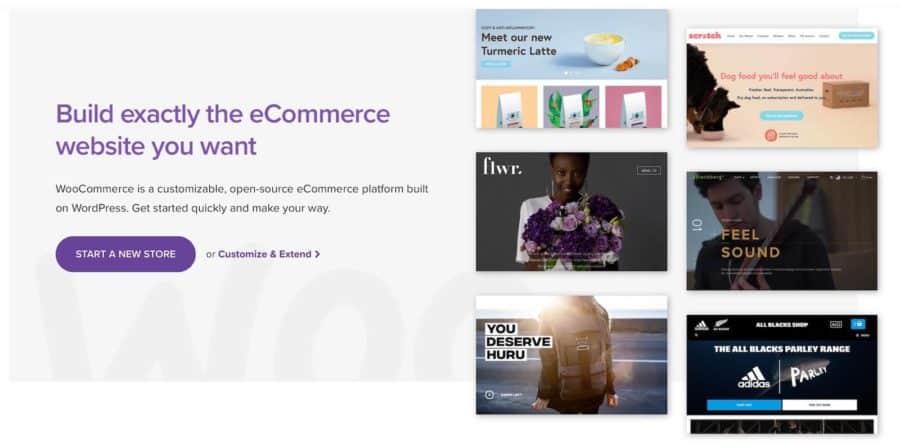 webflow vs wordpress - woocommerce